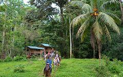 Selva Bananito Experience Farm Horseback Ride