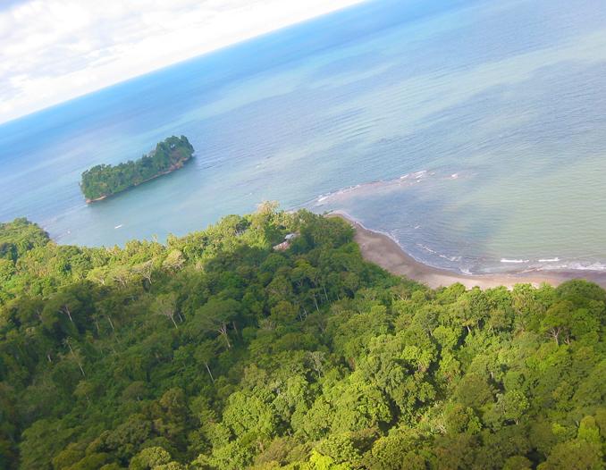 Punta Mona Hike (Congo Bongo)