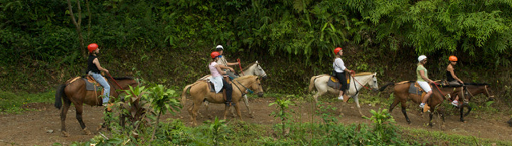 Manuel Antonio Tocori Waterfalls Horseback Tour
