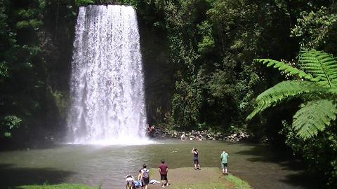 Water Falls Tour of the Spectacular Cairns and Atherton Tablelands World Heritage Area