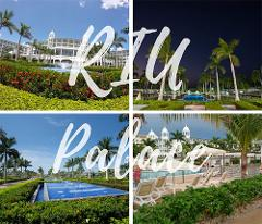 San Jose Airport to RIU Palace - Private Transportation