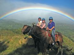 Horseback Riding in the Clouds - Monteverde