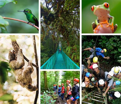 Rincon de la Vieja to Monteverde