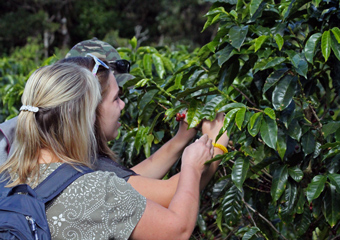 Costa Rica Coffee & Chocolate Tour - Monteverde