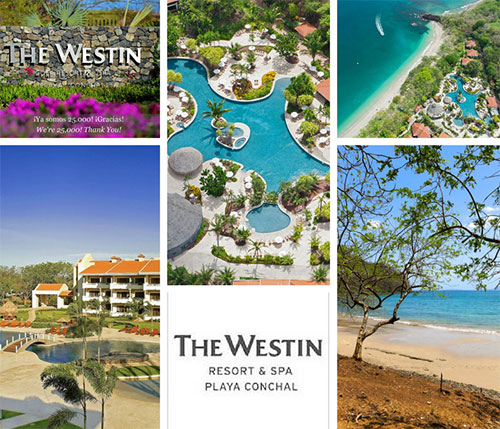 Playas del Coco to The Westin Resort Playa Conchal - Private VIP Shuttle Service