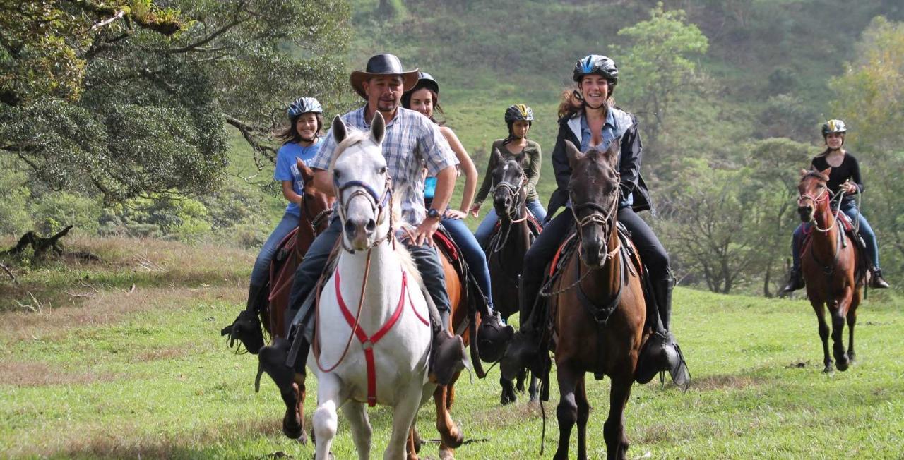 Horseback Riding to Eden Waterfall - Monteverde