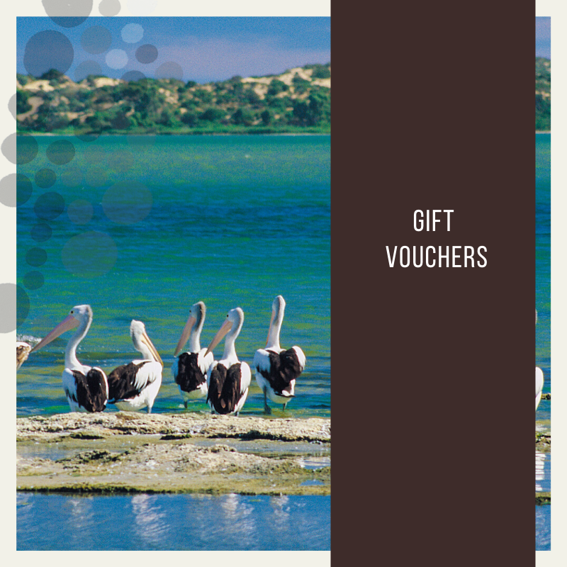 GIFT VOUCHER for Coorong Discovery Cruise