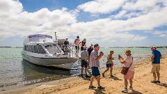 Coorong Discovery Cruise from Adelaide CBD