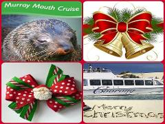 GIFT VOUCHER - XMAS for Murray Mouth Cruise