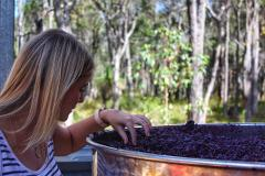 Margaret River Wine, Cheese & Chocolate Tour