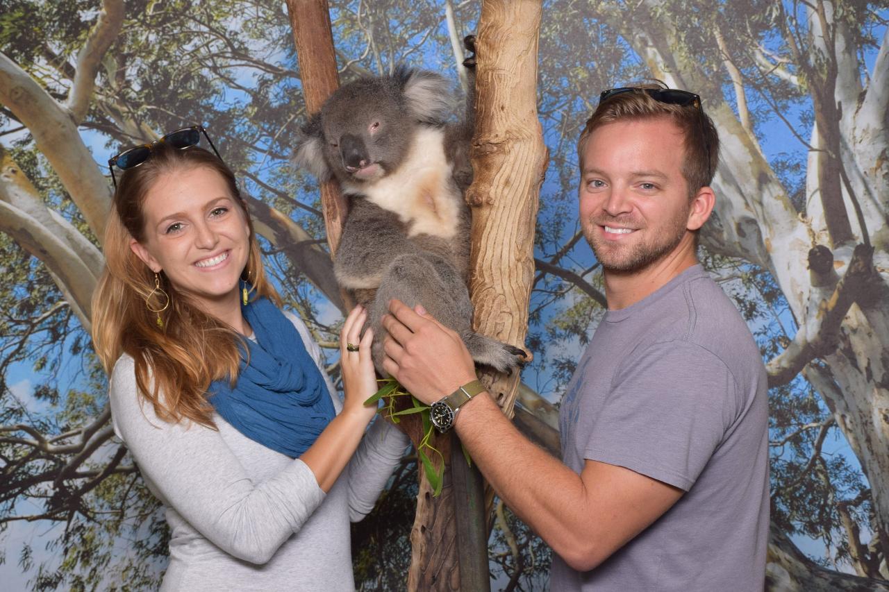 General Admission Pass + Personal Koala Encounter