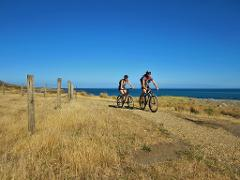 Wild Coast Cruiser Supported eBike Tour @ Cycle Remutaka