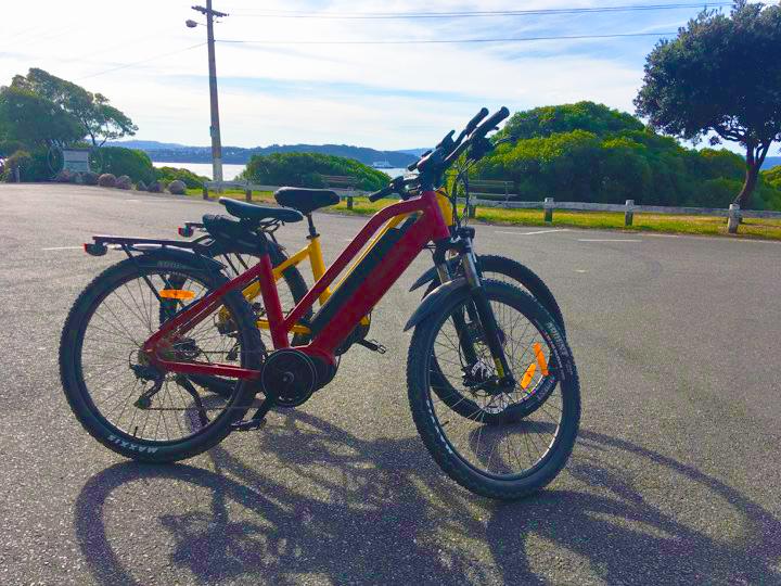 E-bikes 4 Hour Hire @ The Bike Shed - Pencarrow