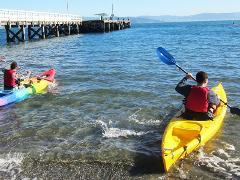 Single Kayak Hire @ The Boatshed - Days Bay