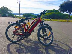Electric Bike Hire @ Petone Wharf (Start of Hutt River Trail)