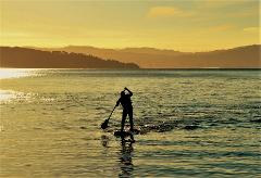 Stand Up Paddleboard (SUP) Hire 1 hour @ The Boatshed - Days Bay