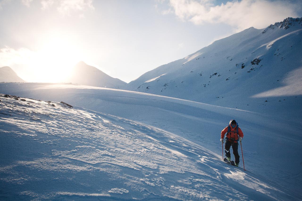 Nordalsfjäll Riksgränsen (3643-623)