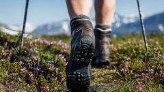 Vandring till Trollsjön/Hike to Trollsjön (3643-620)