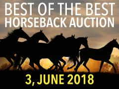 Horseback Auction