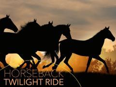 Horseback Twilight Ride