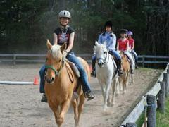 Semi-Private Riding Lesson- (Our Horse)