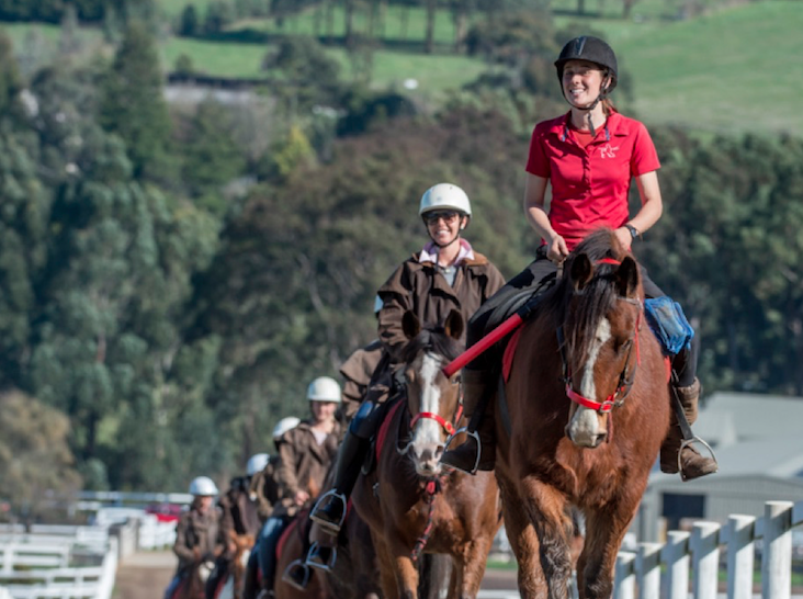3 Hour Horseback Winery Tour - WEEKDAY - Lunch options will be presented upon booking.