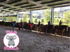 School Holiday Program - Team Koala - Gift Card