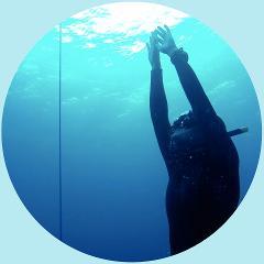 PADI Freediving Course