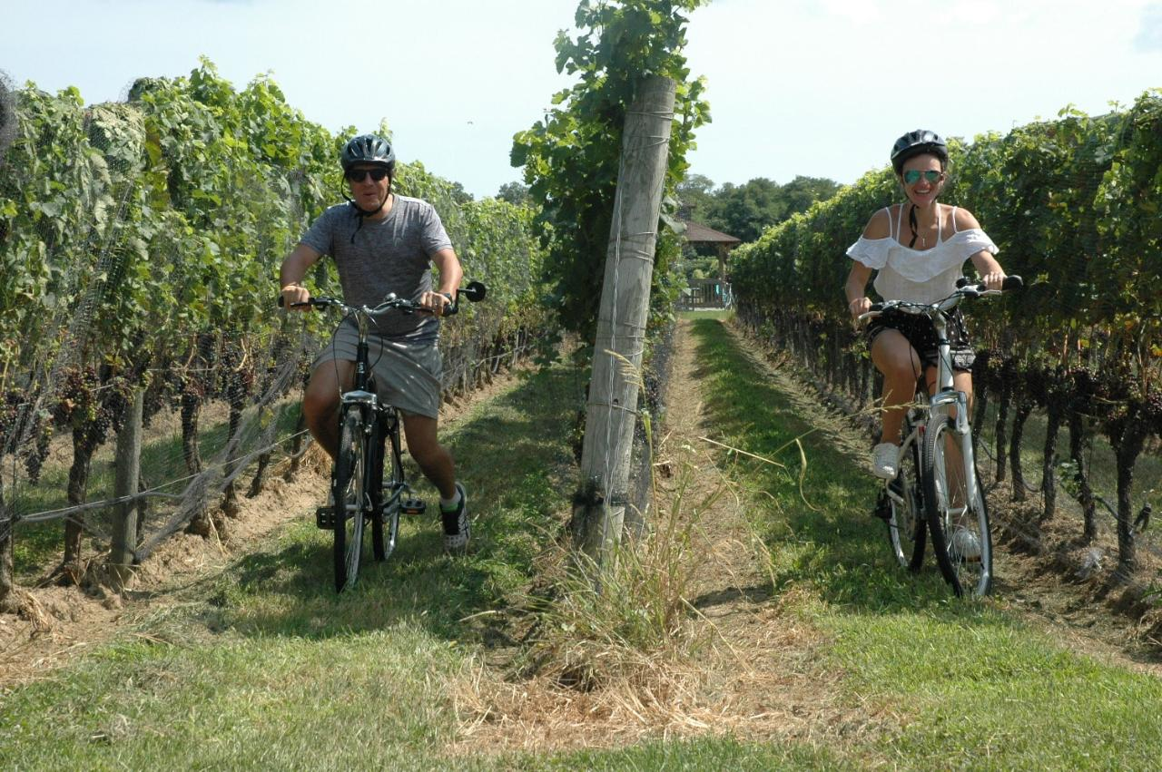 Classic Wine Country Premier Tour