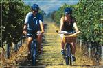 Classic Wine Country A La Carte Mid-Week Escape Tour