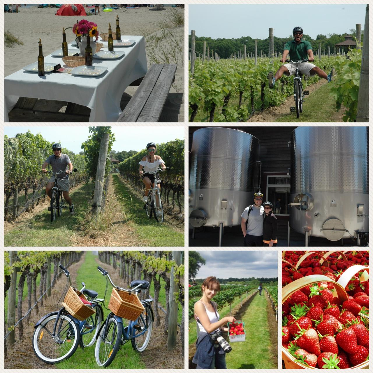 Z North Fork Experience Signature Tour (Berries n Wine)