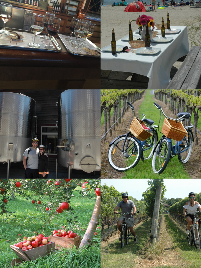 Z North Fork Experience A La Carte Tour (Apples N Wine)