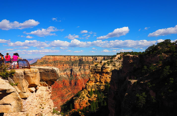 Grand Canyon National Park Luxury Bus Tour photo 10