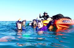 Kayak Hire Special