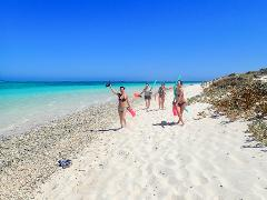 Ningaloo In A Day