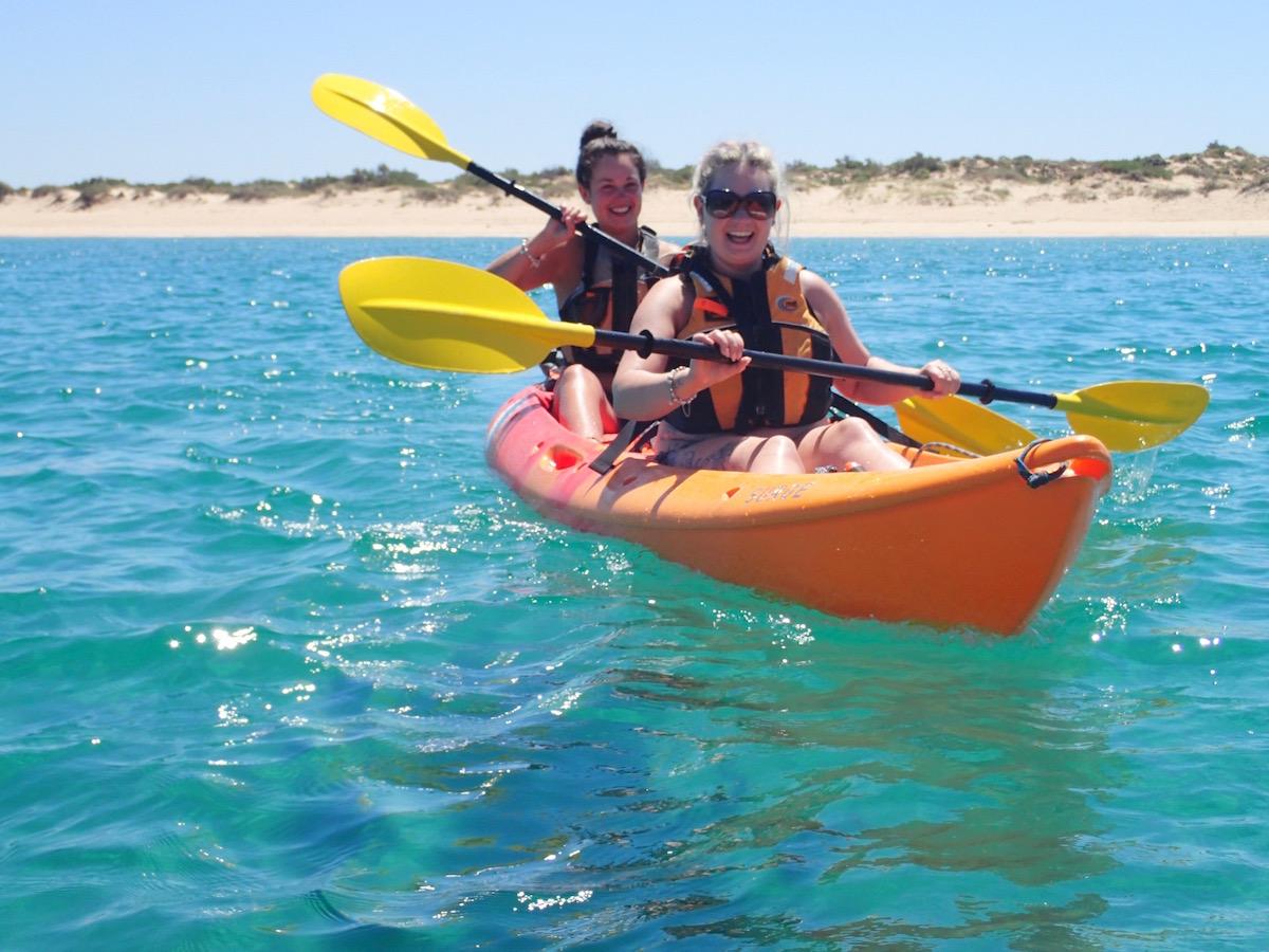 Arvo Cruiser - Half Day Kayak & Snorkel Tour
