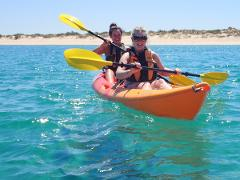Arvo Cruiser - Half Day Kayak & Snorkel Tour