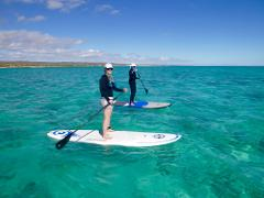 Stand Up Paddle Board (SUP) Tour/Lesson