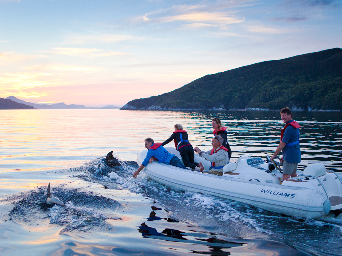 2022  ESCAPE TO PORT DAVEY // 7-Day expedition cruise in Southwest Tasmania // Deluxe Cabin