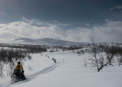 ABISKO - Snowmobile tour 2,5 h