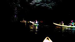 Kayak Glow Worm Tour