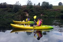 Kayak Hire Single