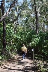 Brian Creek Walk