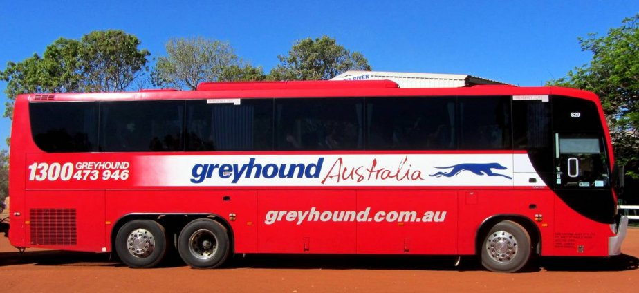 45 Day Greyhound Pass