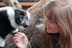 Lemur Close Encounter Gift Card