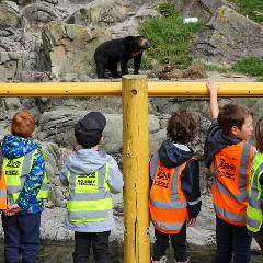 Thursday 15th July: Zoo Keeper Apprentice