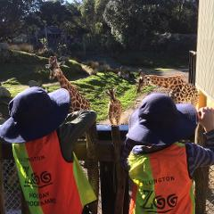 Monday 6th July: Zoo Keeper Apprentice