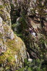 Cape Canopy Tour Gift Voucher