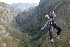 Cape Canopy Tour with return transfer from Cape Town