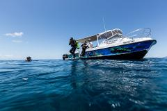 Adventure Outer Reef Dive Packages